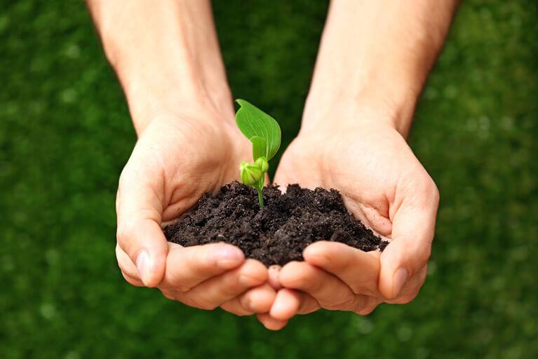 holding-soil
